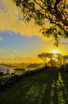Sunset after Rain by SM Shahrokni