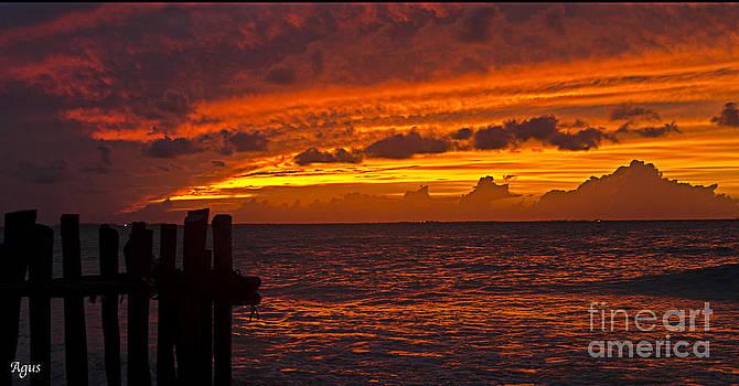 Agus Aldalur - sunset