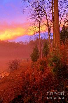 Sunset and Moving Fog  by Robert Pennix