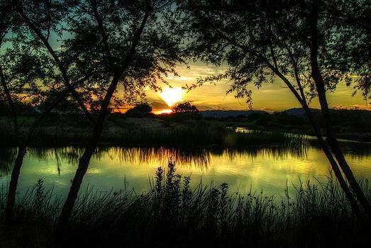 Tam Ryan - Sunset Arizona