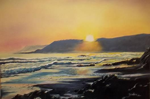 Sunset at Cayucos by Terry Godinez