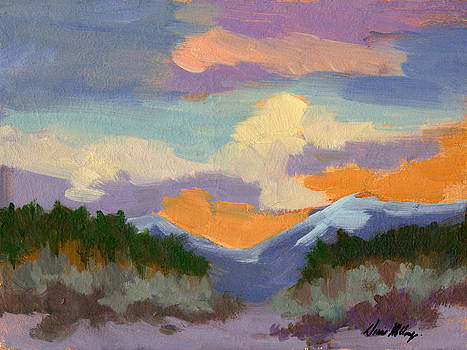 Diane McClary - Sunset at Coachella Valley Study