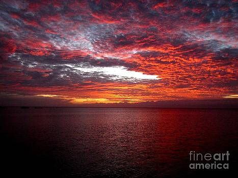Sunset at Fiji by Sylvie Heasman