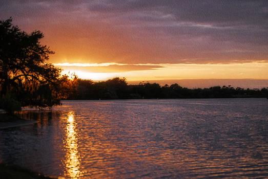 Judy Hall-Folde - Sunset at Franklin Locks