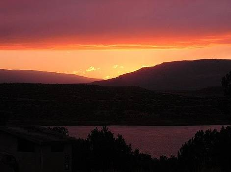 Sunset At Heron Lake by Daria Yesieva-Kartsinski