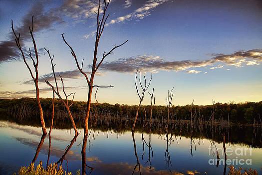 Sunset at Kill Creek by Joenne Hartley