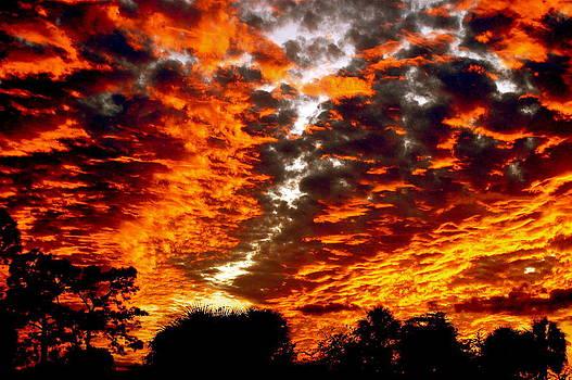 Sunset at Lake Woodruff by Don Bangert