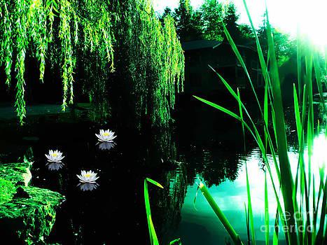 Sunset at Sprague's Pond by Eddie Eastwood