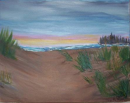 Sunset at the Beach by Tony  DeMerchant