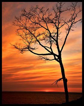 Sunset at Warren Dunes by Gene Tatroe