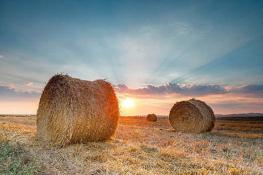 Sunset Bales by Evgeni Dinev