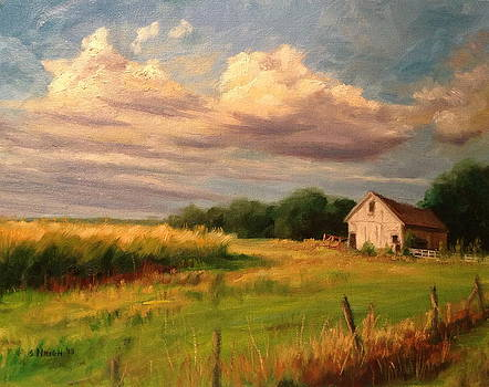 Sunset Barn by Steve Haigh