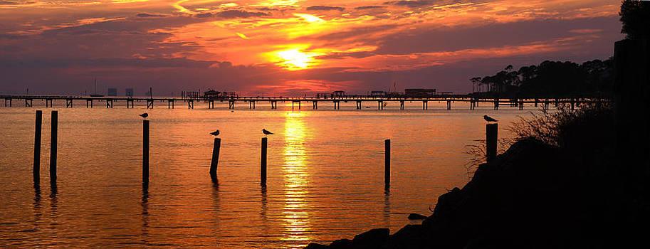 Sunset Bay by Renee Hardison