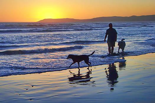 Nikolyn McDonald - Sunset Beach Stroll - Man and Dogs