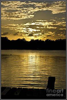 Agus Aldalur - Sunset con ondas de mar