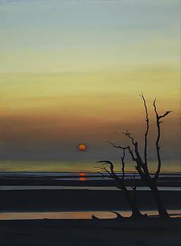 Sunset by David P Zippi