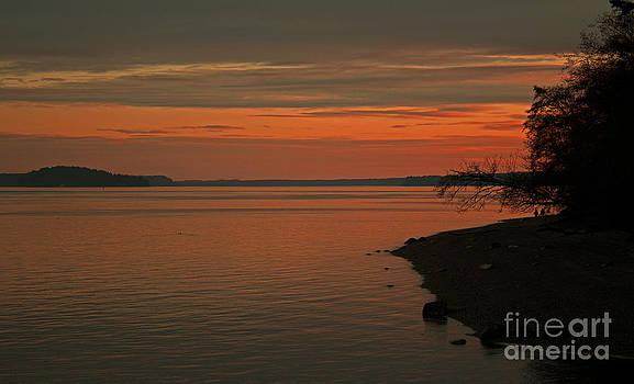 Sunset by Deanna Proffitt