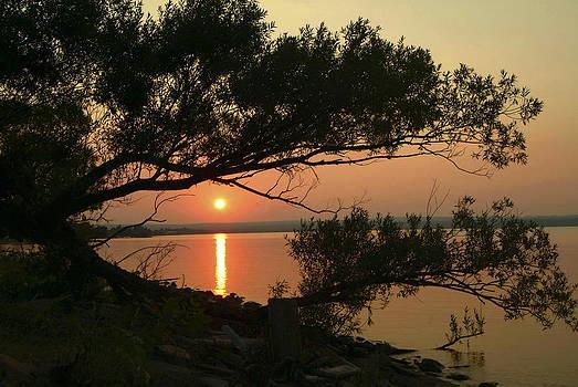 Devinder Sangha - Sunset