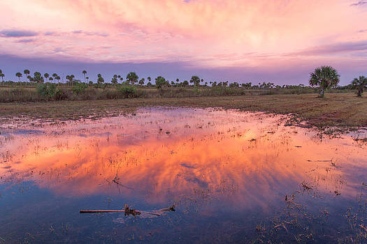 Everglades Afterglow by Doug McPherson