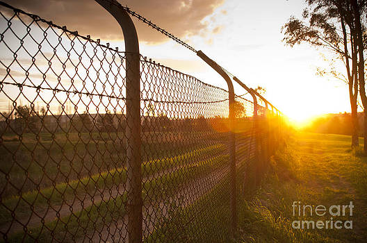 Tim Hester - Sunset Fence