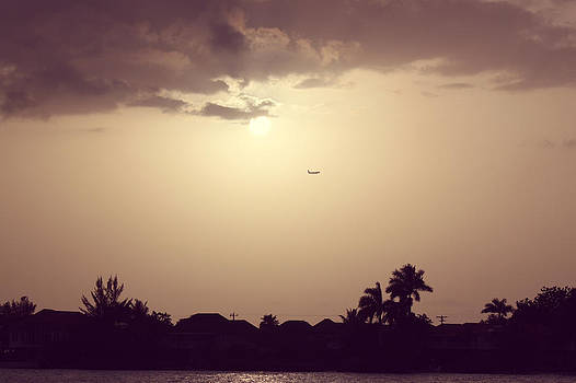 Sunset Flight by Melanie Lankford Photography