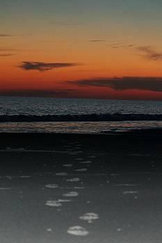 Sunset Footprints by Joanne Askew