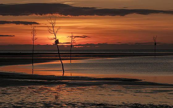 Fred LeBlanc - Sunset