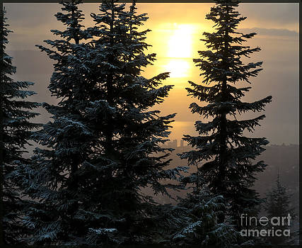 Glow - Grouse Winter Sunset by Maria Janicki