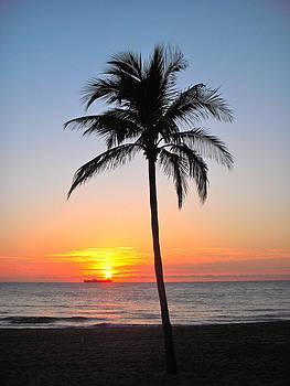 Sunset I by Jairo Rodriguez