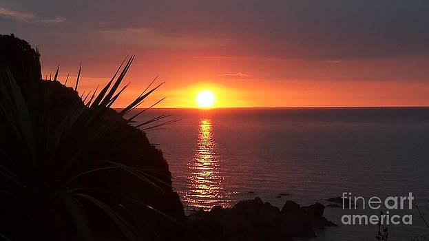 Sunset in Combe Martin by Jeanette Hibbert
