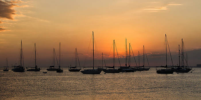 Sunset in Crandon Park Marina by Alex Galiano