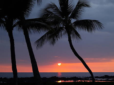 Sunset In Hawaii by Athala Carole Bruckner