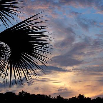 Peg Urban - Sunset in Pastel