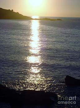 Sunset in St. Ives Collection - 5 by Ava Larsen
