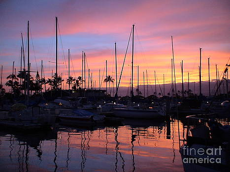 Sunset in the Ala Wai by Laura  Wong-Rose