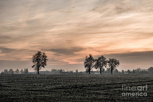 Sunset In The Country - Orange by Hannes Cmarits