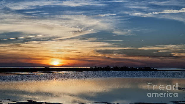 Sunset in the south by Tammy Smith
