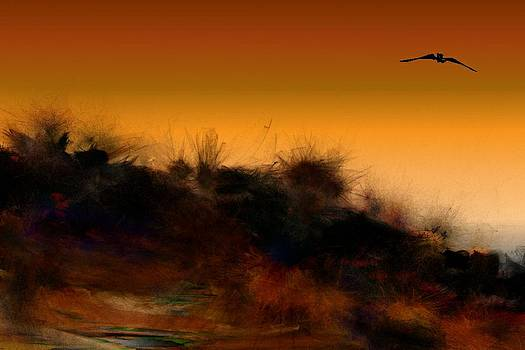 Sunset in the Weeds 1 by Carol Sullivan