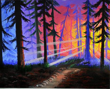 Sunset  in the woods by P Dwain Morris