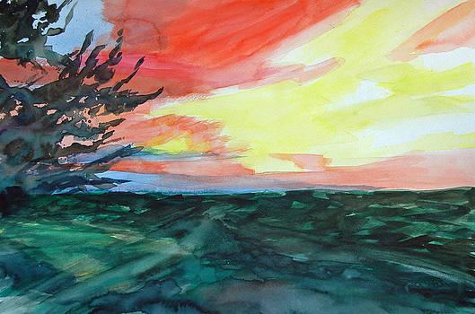 Sunset Johnson City by Donna Crosby