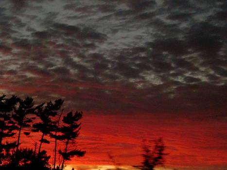 Sunset by Karolina Olszewska