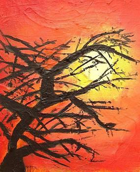 Sunset by Kendall Wishnick Adams