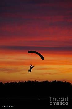 Tannis  Baldwin - Sunset Landing