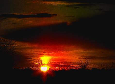 Laura Carter - Sunset Landscape Photograph