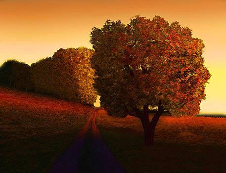 Sunset Lane by John Townes