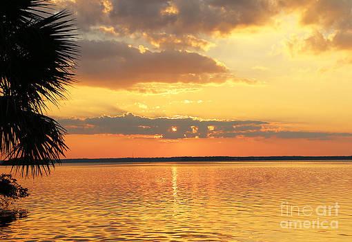 Sunset Lillian by Light Rapture