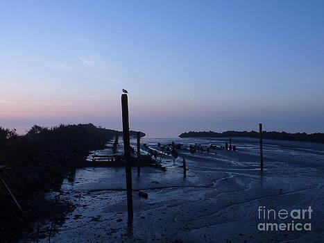 Sunset Low Tide by Katherine Karsten