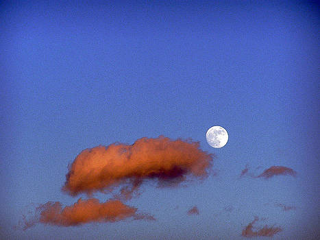 Sunset moon by Sally Stevens