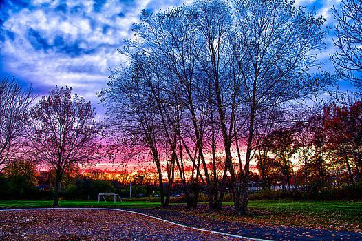 Sunset November 8th 2013 by Michael  Bennett