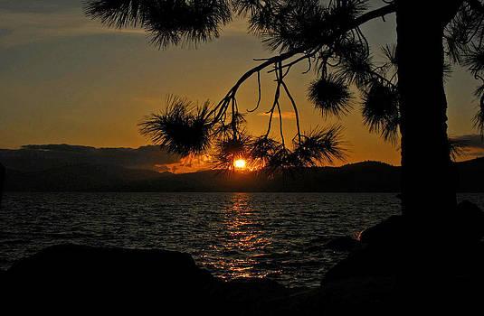 Sunset of Lake Tahoe by Mischelle Lorenzen